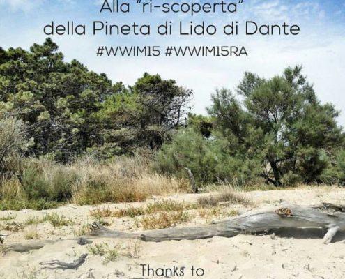 Pineta di Lido di Dante Worldwide Instameet - News La Piramide